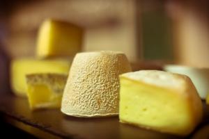 queso_artesanal_homosibaris_cata_cerveza_maridaje